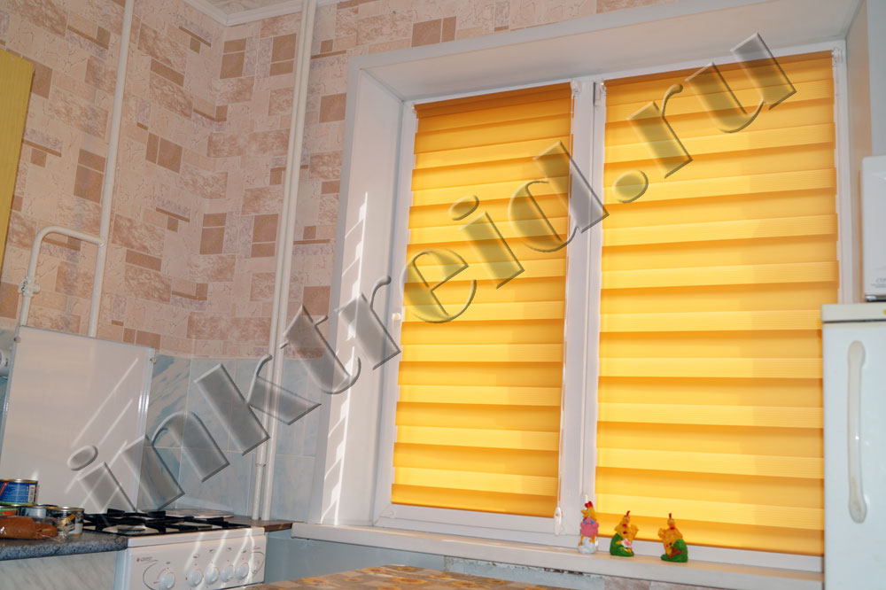 roller Zebra blinds in Volgograd 33