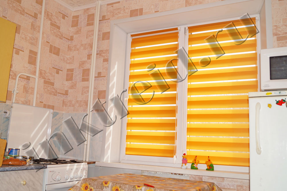 roller Zebra blinds in Volgograd 35