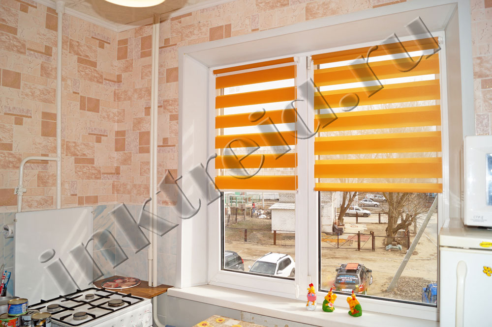 roller Zebra blinds in Volgograd 37