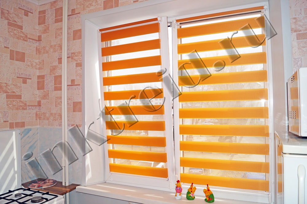 roller Zebra blinds in Volgograd 38